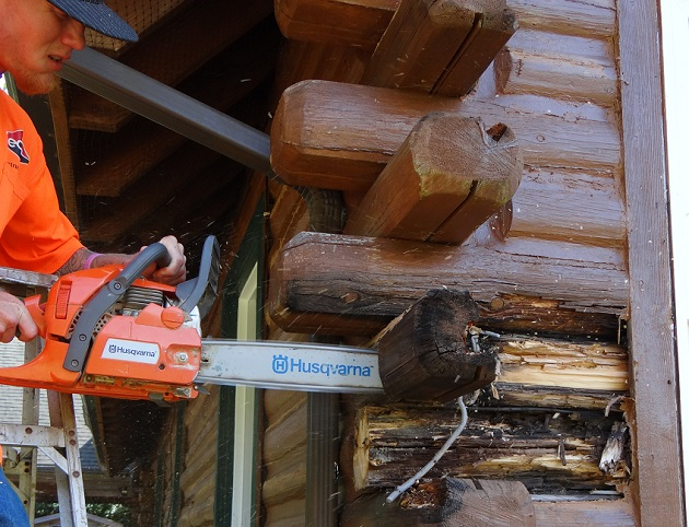 Oregon Log Home Care_Log Rot 1